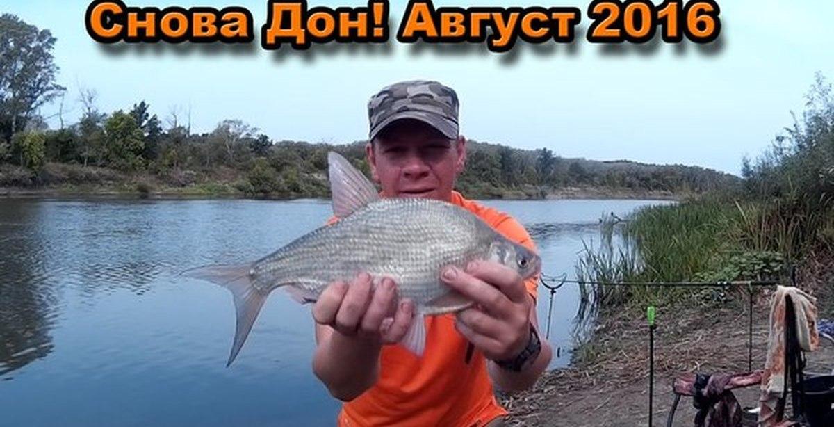 рыбалка на дону запреты 2016 волгоградская область