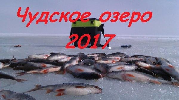 рыбалка на чудском фото