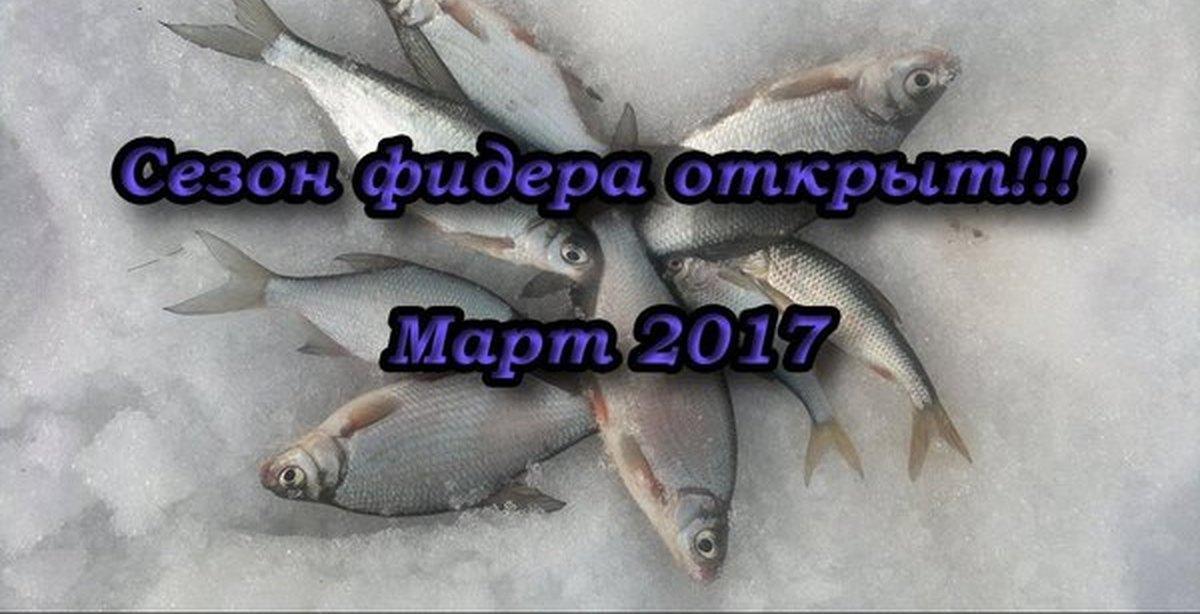 рыбалка в марте на дону на фидер
