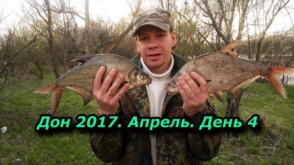 прогноз клева в сальске ростовской
